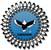 eaglehawk logo baggrund 2009 copy